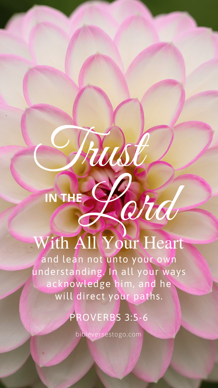 Christian Wallpaper – Dahlia Proverbs 3:5-6
