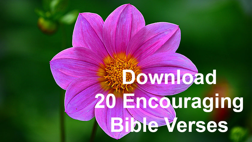 DOWNLOAD - Verses to Encourage – Bible Verses To Go