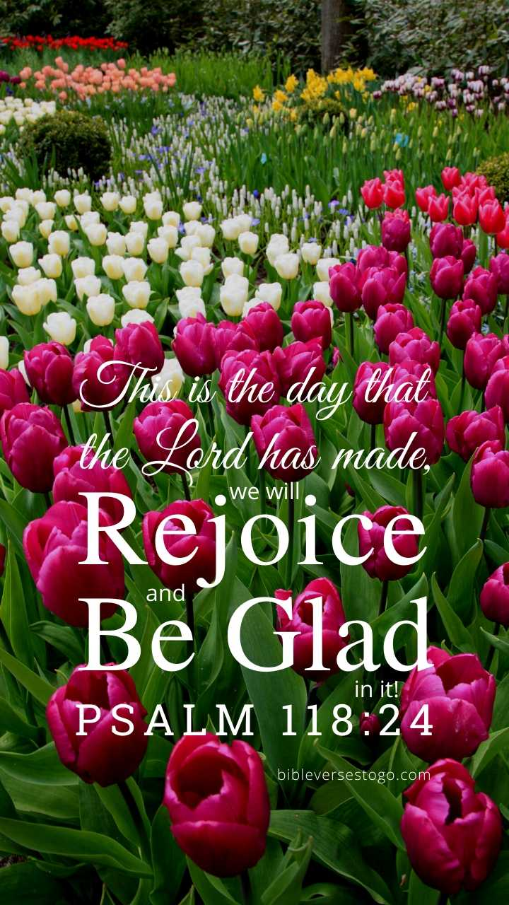Christian Wallpaper - Field of Tulips Psalm 118:24