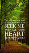 Christian Wallpaper - Forest Path Jeremiah 29:13