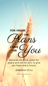 Christian Wallpaper - Grains Jeremiah 29:11