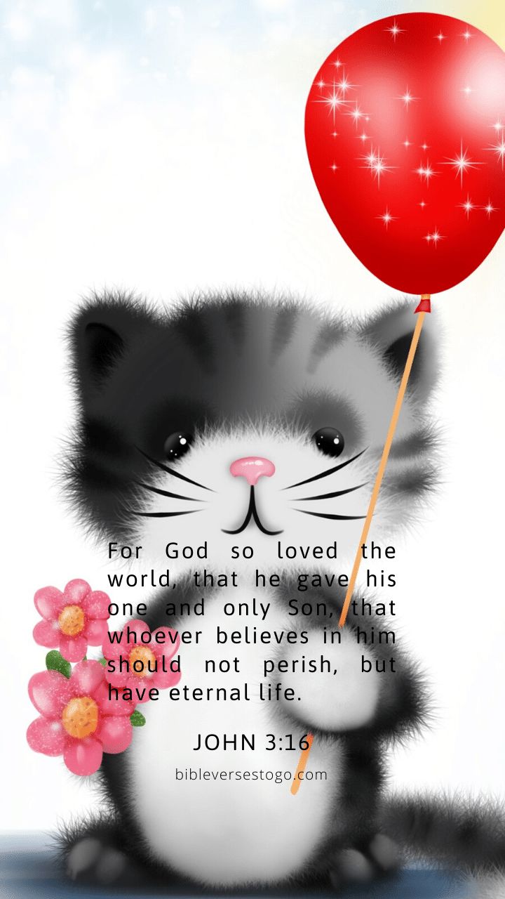 Christian Wallpaper – Kitty John 3:16