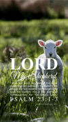 Christian Wallpaper – Lamb Psalm 23:1-3