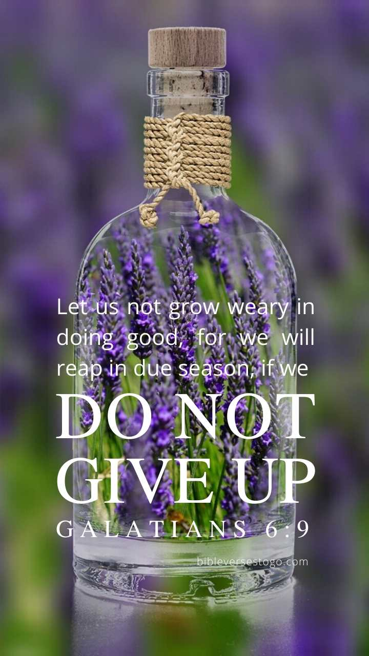 Christian Wallpaper - Lavender Bottle Galatians 6:9