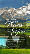 Christian Wallpaper – Mountains Jeremiah 29:11