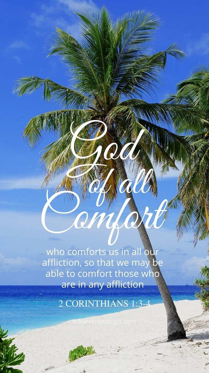 Christian Wallpaper - Palm Beach 2 Corinthians 1:3-4