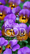 Christian Wallpaper – Pansies Matthew 6:33