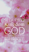 Christian Wallpaper – Pink Bloom Matthew 6:33