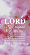 Christian Wallpaper – Pink Bloom Psalm 23:1-3