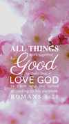 Christian Wallpaper – Pink Bloom Romans 8:28