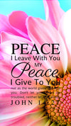 Christian Wallpaper – Pink Daisy John 14:27