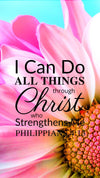 Christian Wallpaper – Pink Daisy Philippians 4:13