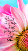 Christian Wallpaper – Pink Daisy Matthew 5:8