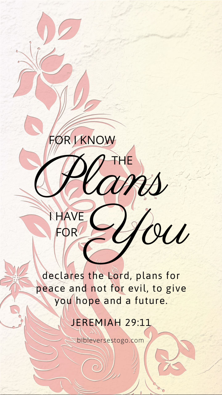 Christian Wallpaper – Pink Swan Jeremiah 29:11