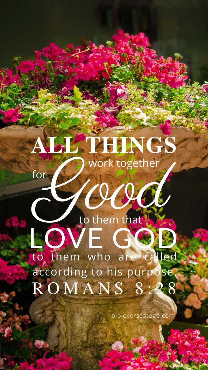 Christian Wallpaper – Planter Romans 8:28