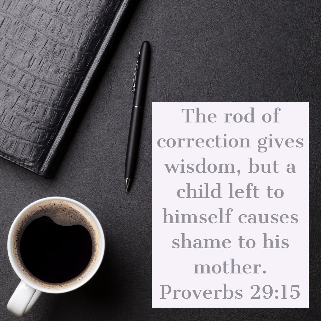 Proverbs 29:15 - Rod of Correction Gives Wisdom - Bible Verses To Go