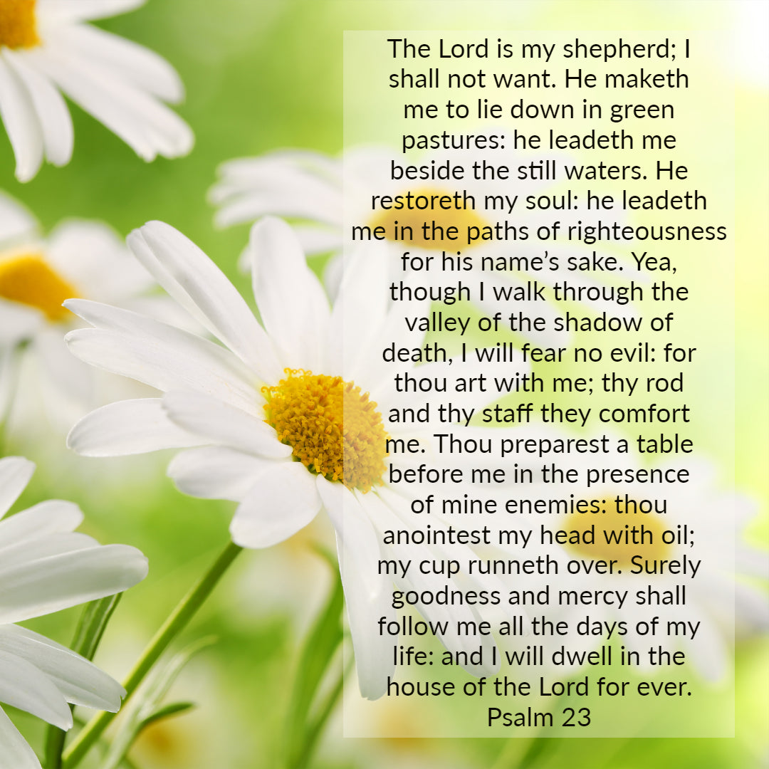 Psalm 23 Lord Is My Shepherd I Shall Not Want Free Download Bible Verses To Go