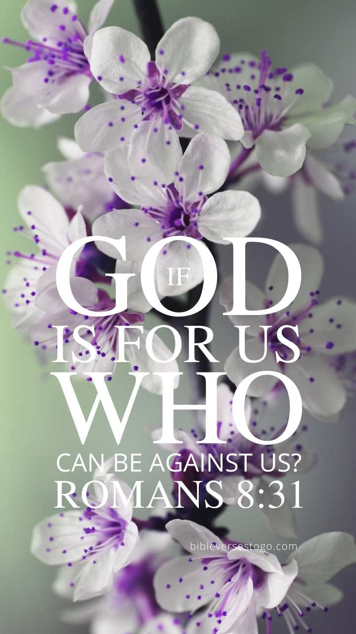 Christian Wallpaper - Purple n White Romans 8:31