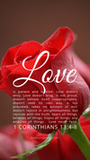 Christian Wallpaper – Red Rose 1 Corinthians 13:4-8