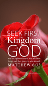Christian Wallpaper – Rec Rose Matthew 6:33