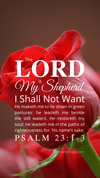 Christian Wallpaper – Red Rose Psalm 23:1-3