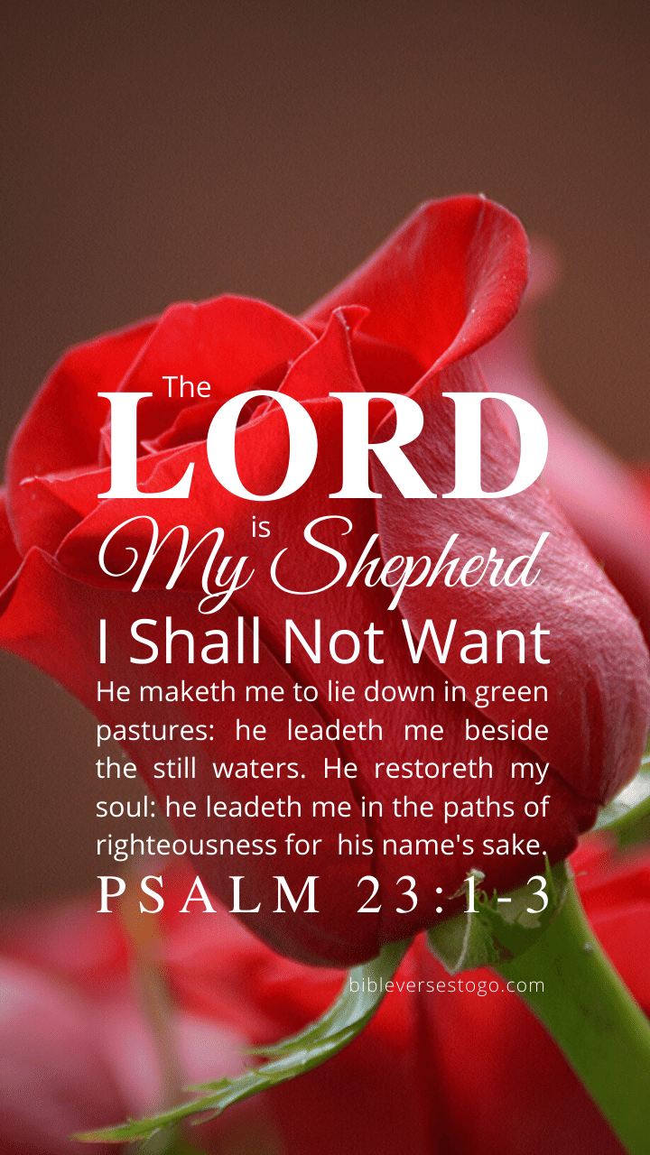 Red Rose Psalm 23 1 3 Bible Verses To Go
