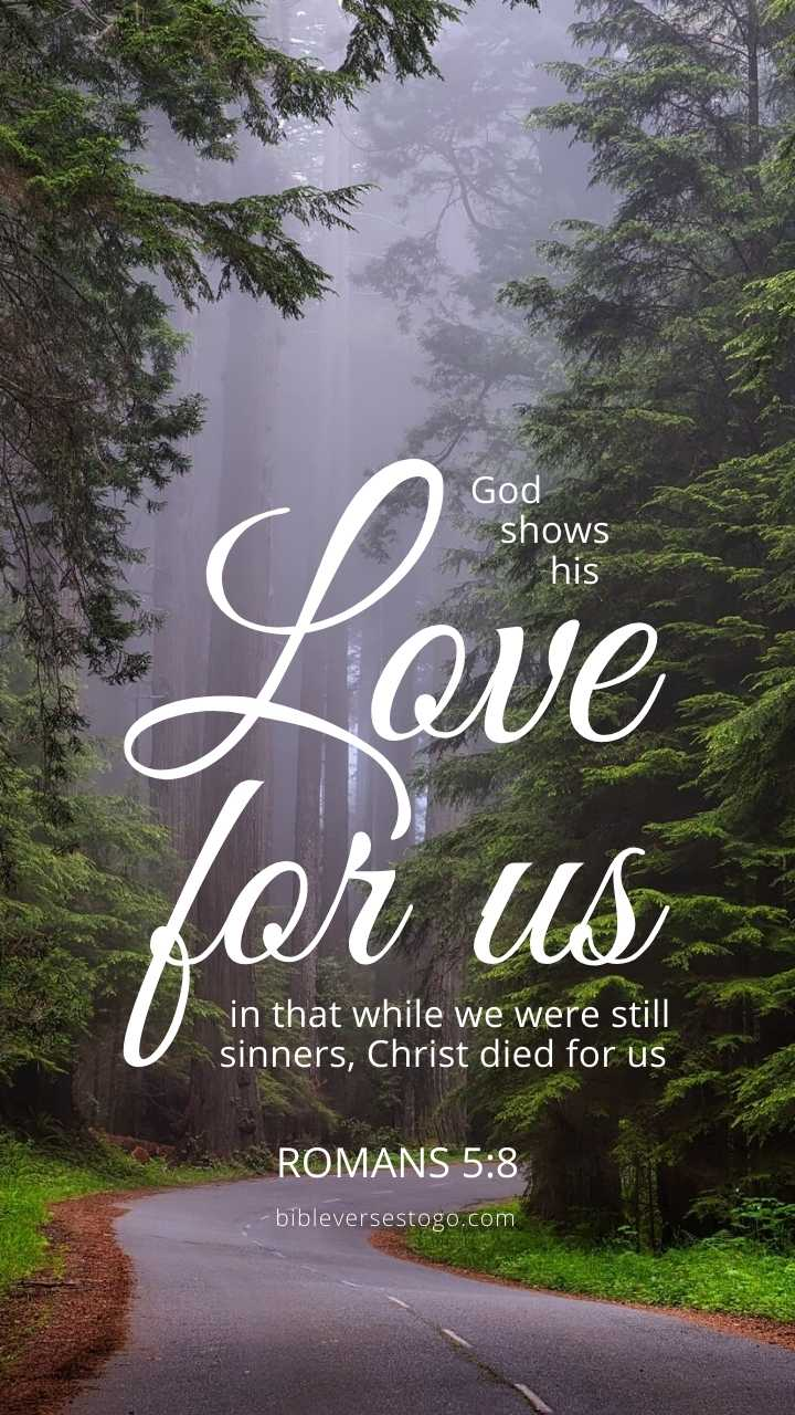 Christian Wallpaper - Redwood Forest Romans 5:8