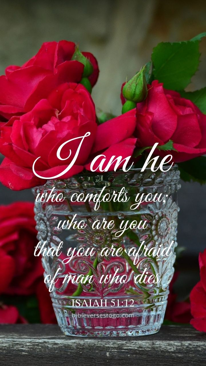 Christian Wallpaper - Rose Vase Isaiah 51:12