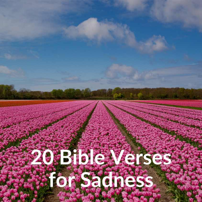 20 Bible Verses for Sadness - Download
