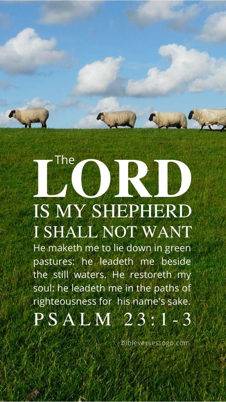 Christian Wallpaper - Sheep Psalm 23:1-3
