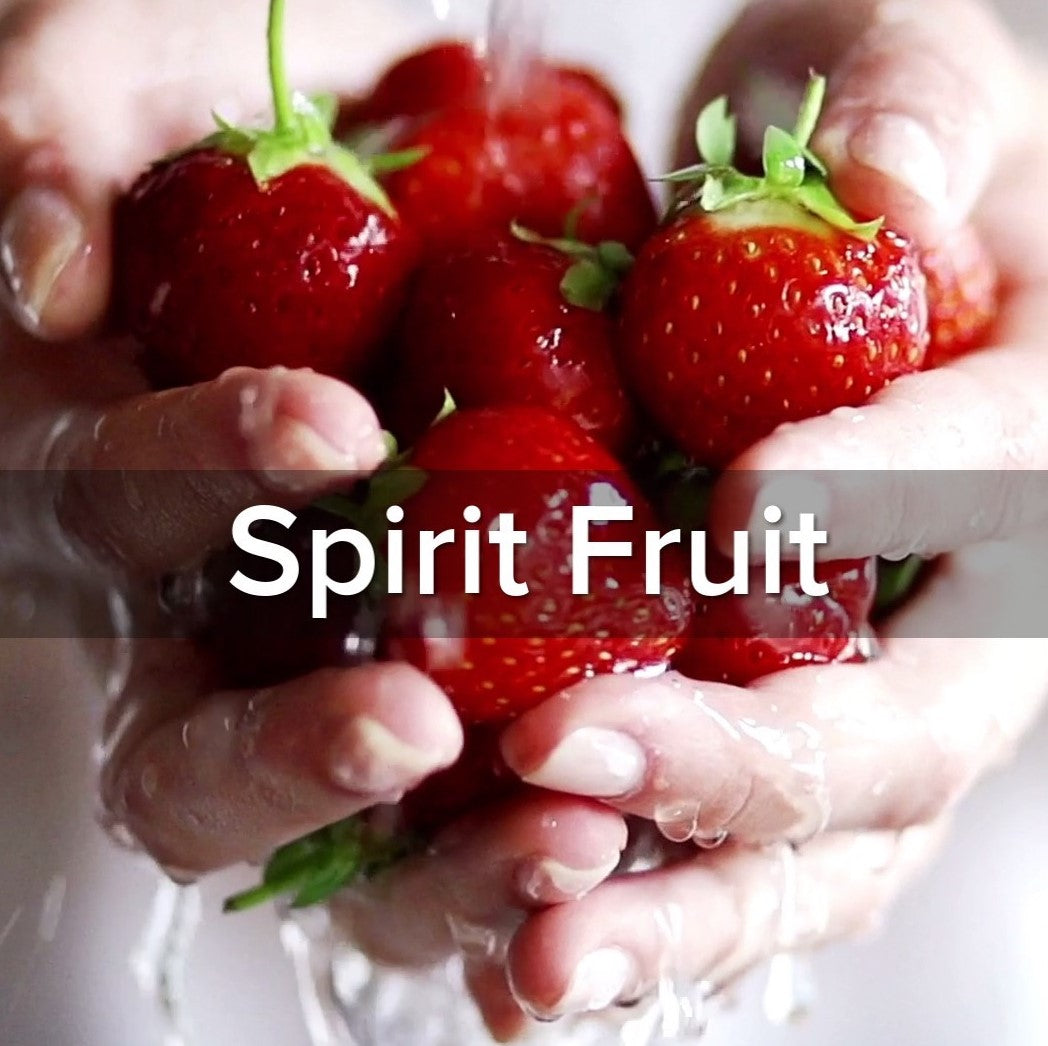 Galatians 5:22-23 Spirit Fruit - VIDEO