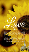 Christian Wallpaper – Sunflower 1 Corinthians 13:4-8