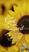 Christian Wallpaper - Sunflower John 3:16