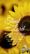 Christian Wallpaper - Sunflower Proverbs 3:5-6