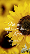 Christian Wallpaper – Sunflower Psalm 46:10