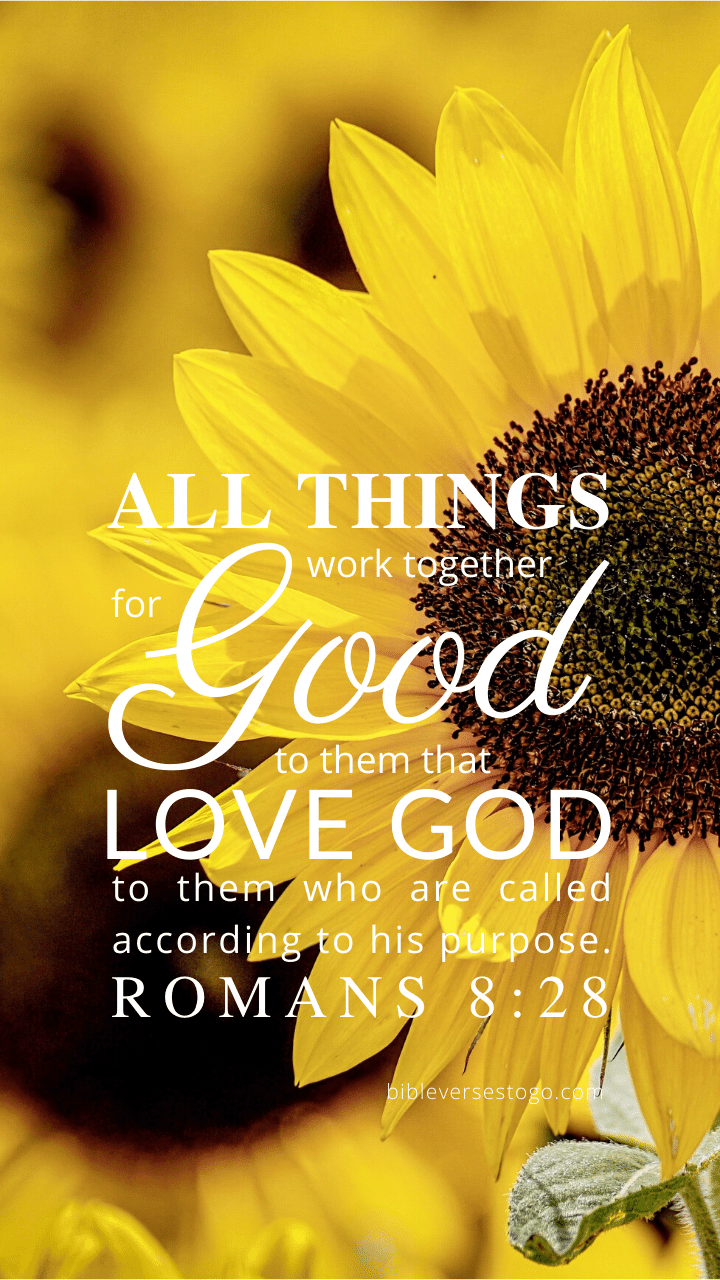 Christian Wallpaper – Sunflower Romans 8:28