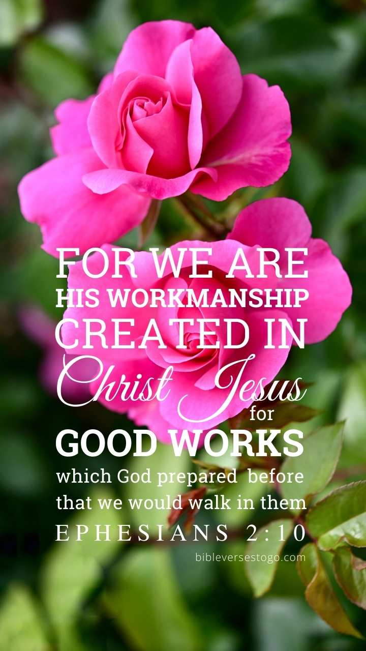 Christian Wallpaper - Two Roses Ephesians 2:10