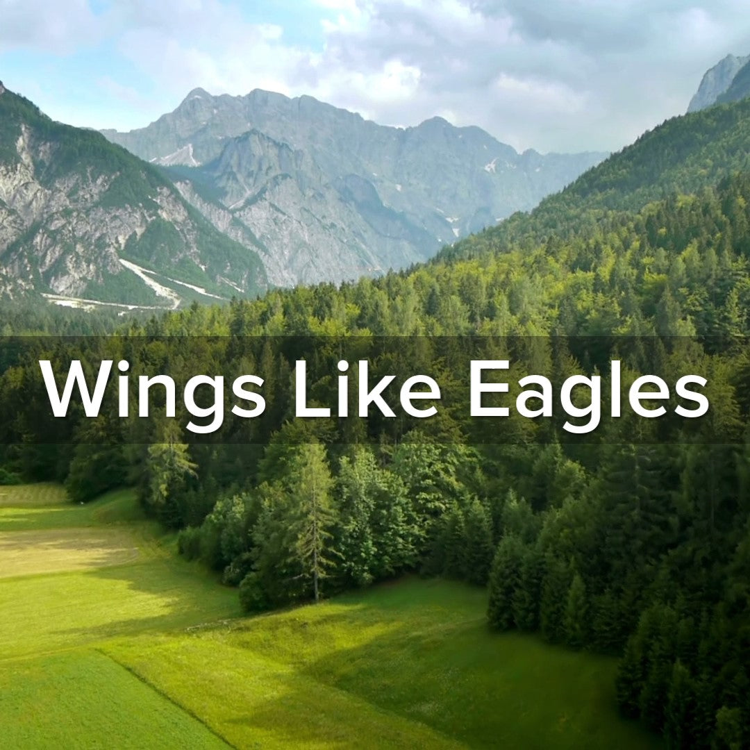 Isaiah 40:31 Wings Like Eagles - VIDEO
