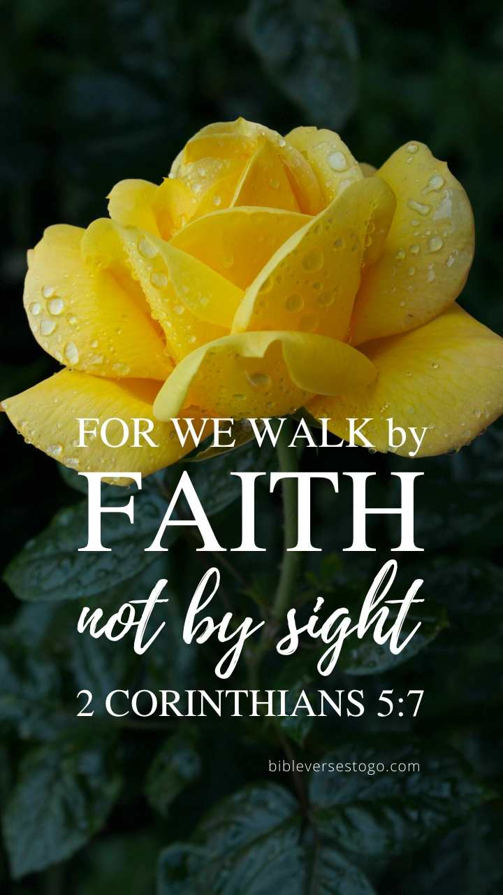 Christian Wallpaper - Yellow Rose 2 Corinthians 5:7
