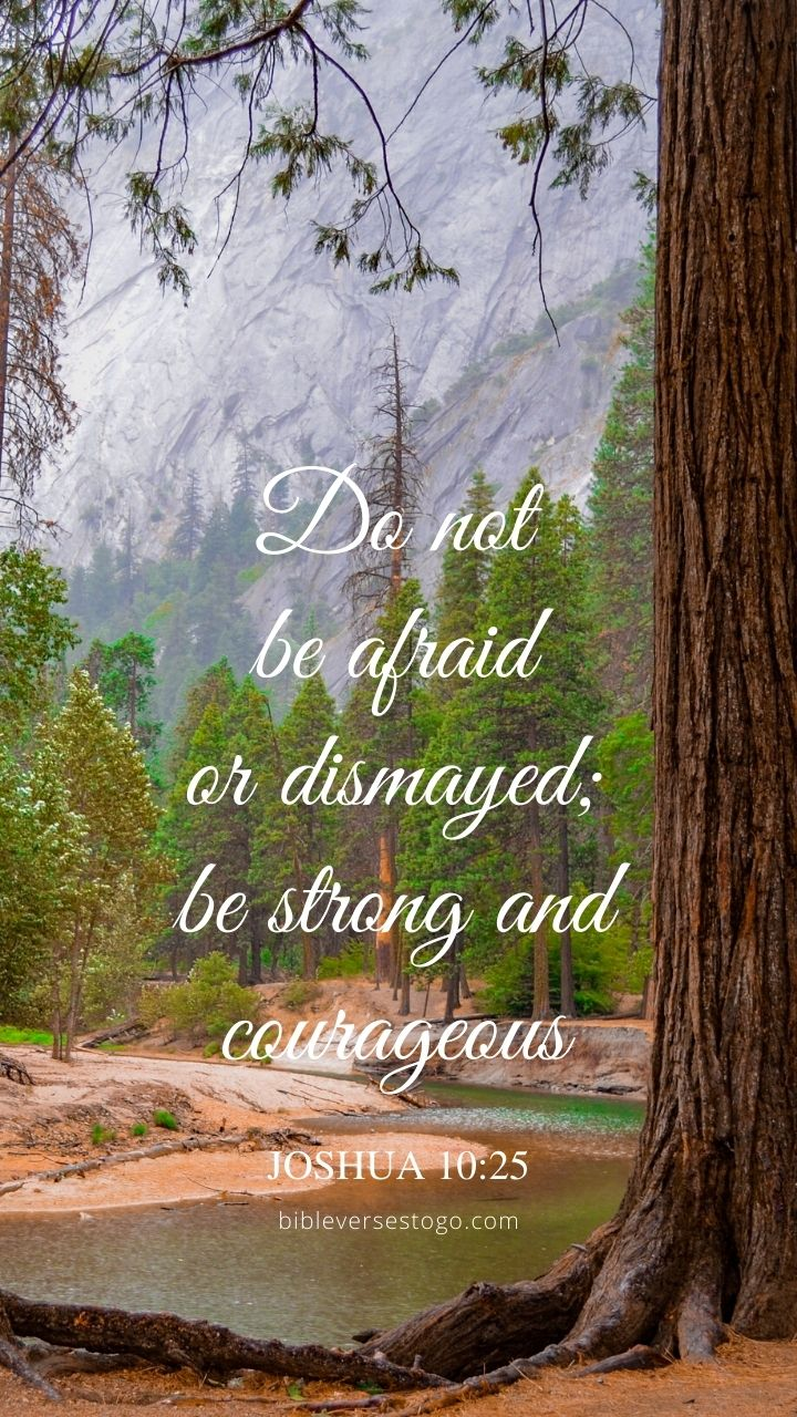 Christian Wallpaper - Yosemite Redwoods Joshua 10:25