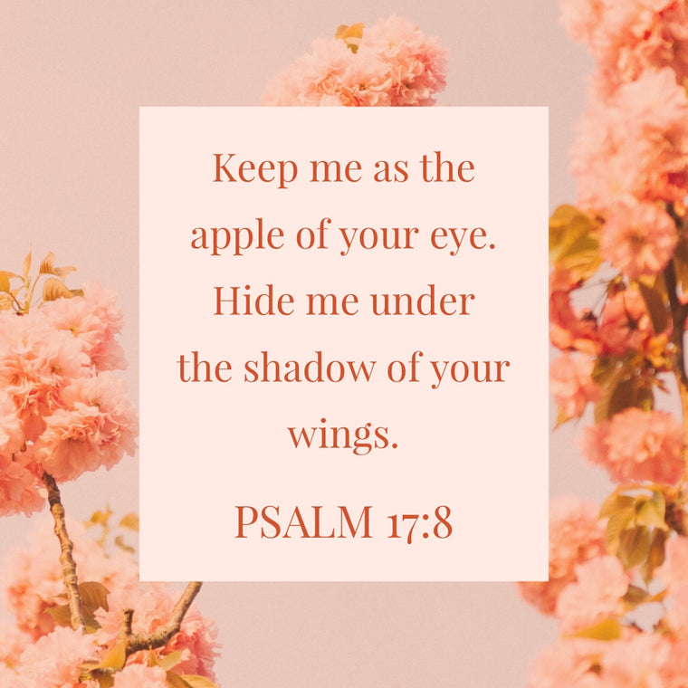 Psalm 17:8 - Shadow of Your Wings - Bible Verses To Go