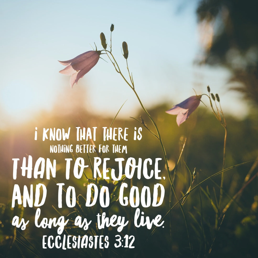 Ecclesiastes 3:12 - Rejoice and Do Good - Bible Verses To Go