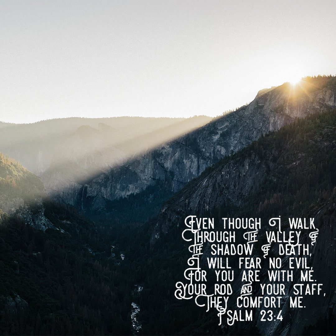 Psalm 23:4 - I Will Fear No Evil - Bible Verses To Go