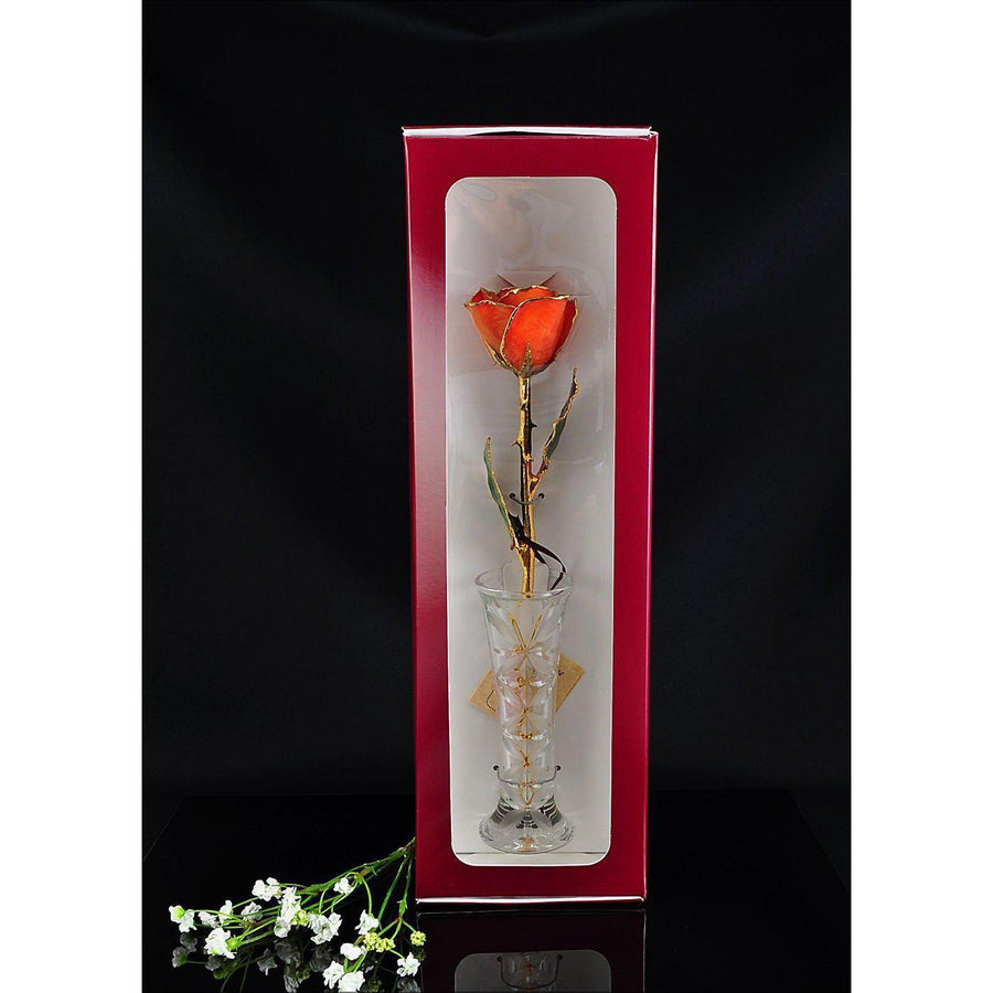 24K Gold Tipped Orange Rose with Crystal Vase-Gold Trimmed Rose-The Rose Lady-Top Notch Gift Shop