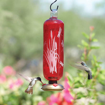 Dragonfly Filigree Glass Hummingbird Feeder - Flame Red