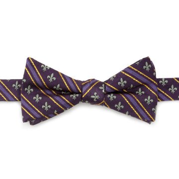 Mardi Gras Stripe Men's Bow Tie