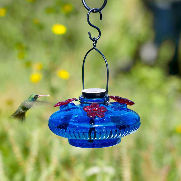 Blue Bloom Glass Hummingbird Feeder by Parasol Gardens-Bird Feeder-Parasol Gardens-Top Notch Gift Shop