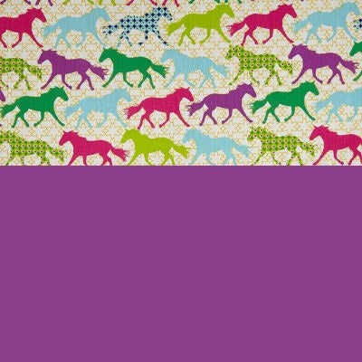 CANTER snap in one multi fit