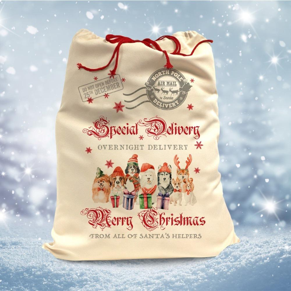 Slickers ◊ Doghouse Accessories Santa Sack