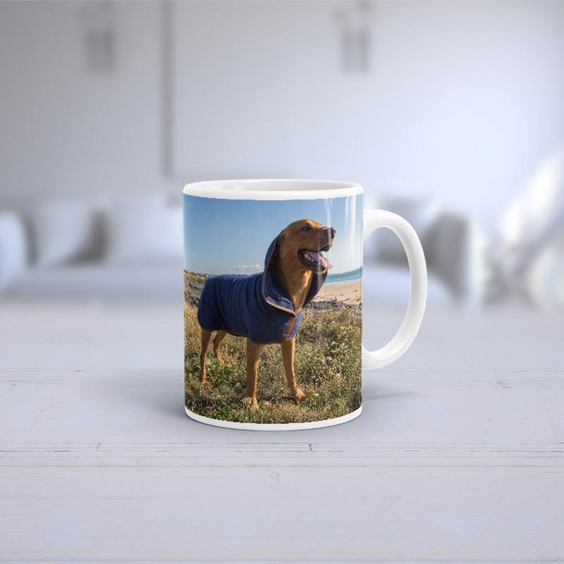 Slickers ◊ Doghouse Personalised Product Dog Photo Print Mug